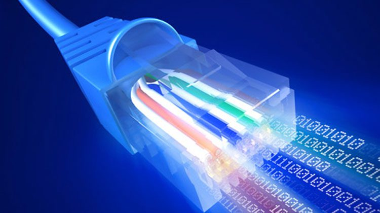 NetworkCableColourful