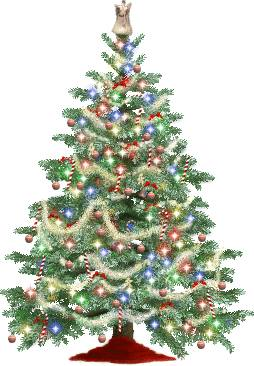 Cut down your own Christmas tree - My Coast Now