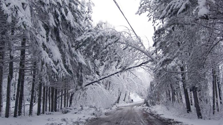 43,000 BC Hydro customers impacted during storm - My Coast Now